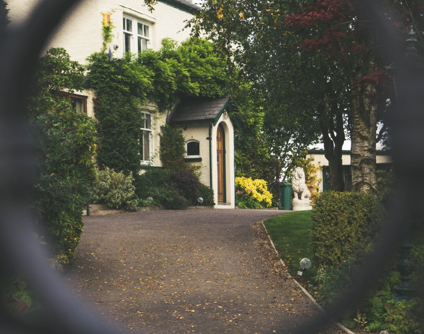 driveway leading up to house covered in green shrubbery
